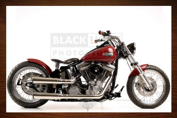 Red Softail
